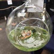 Dans une bulle