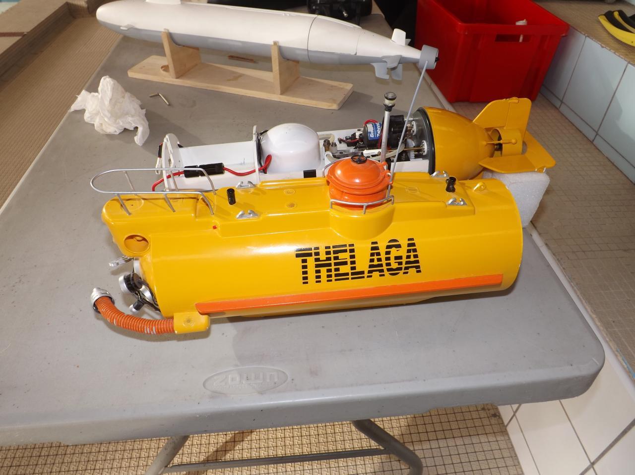 Anatomie du Thégala (Galathée à l'envers)