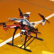 Un oiseau RC sur un Multi-rotors