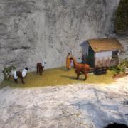Refuge et lamas