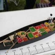 Un barque à cornet des Hortillonnages d'Amiens